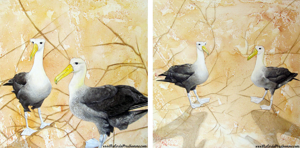 mixed media art, bird painting, birds, albatross
